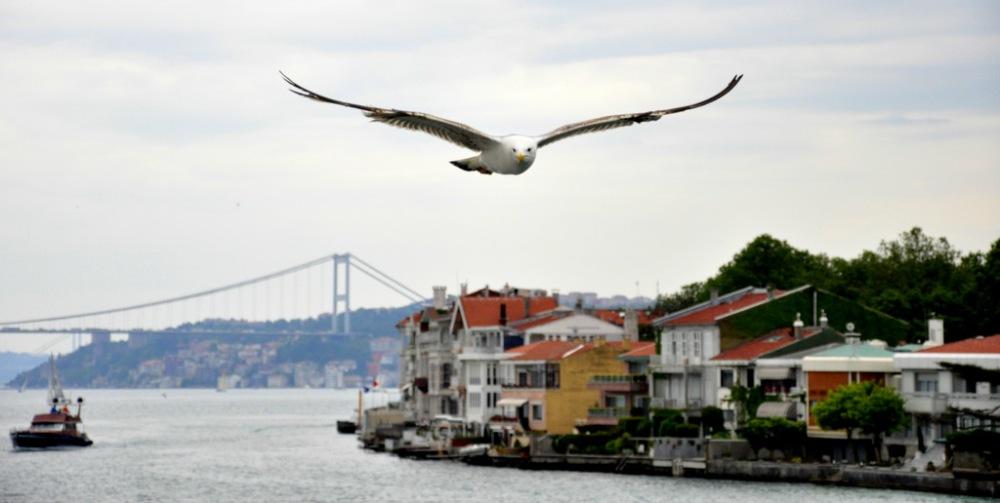 İstanbul'da rehberle gezmek